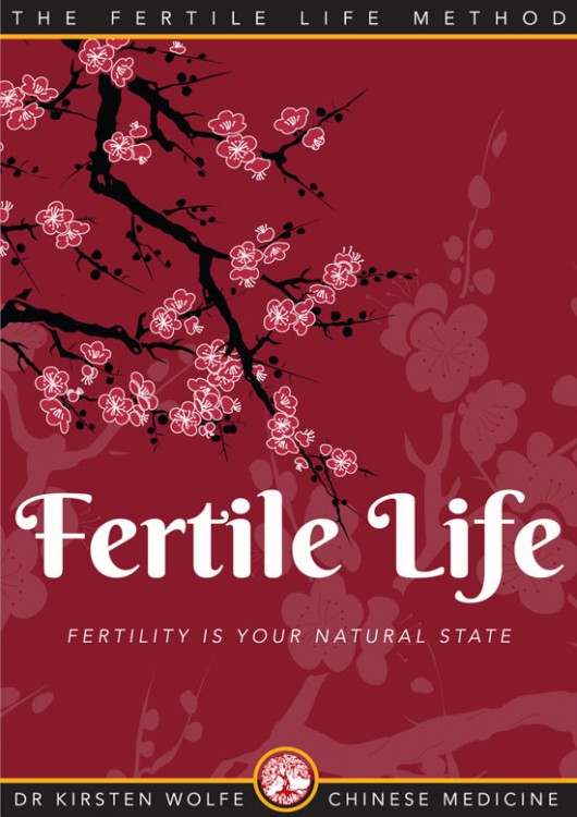Fertile-Life-Ebook-2015-Cover